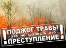 Подробнее: В Республике Алтай введен особый...